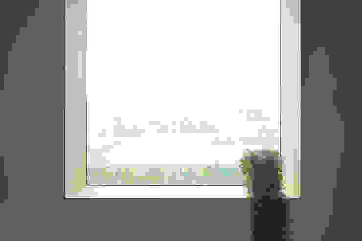 house-UT モダンな 窓&ドア の 創右衛門一級建築士事務所 モダン ガラス