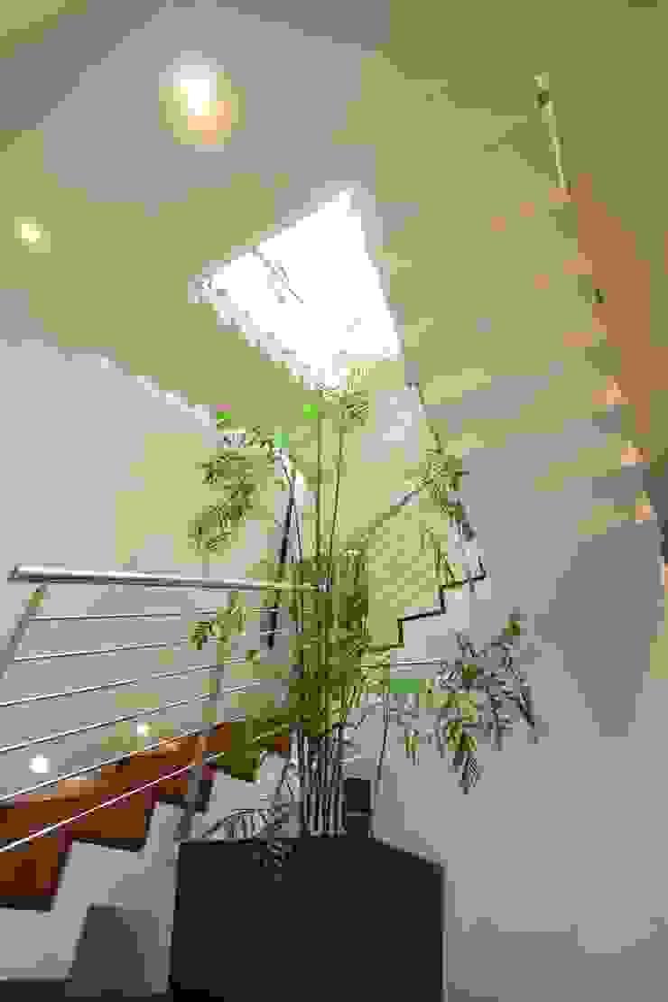 Escaleras Pasillos, vestíbulos y escaleras modernos de ODICSA Moderno Madera Acabado en madera