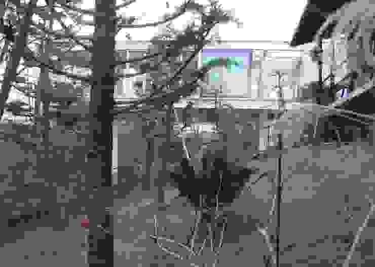 建築家の自邸 Architect's own house オリジナルな 家 の 高原生樹建築設計事務所 オリジナル