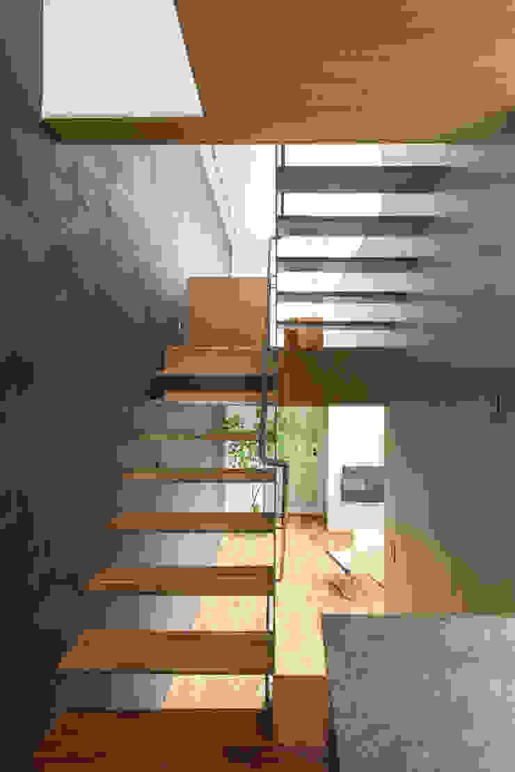 黒川の家 モダンスタイルの 玄関&廊下&階段 の Nobuyoshi Hayashi モダン