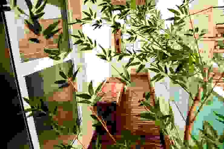 Consultório Médico VARANDA Clínicas modernas por Marcia Debski Ferreira Designer de Interiores Moderno