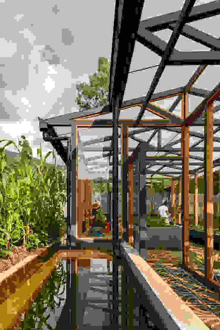Jardin d'hiver moderne par TAAR / TALLER DE ARQUITECTURA DE ALTO RENDIMIENTO Moderne