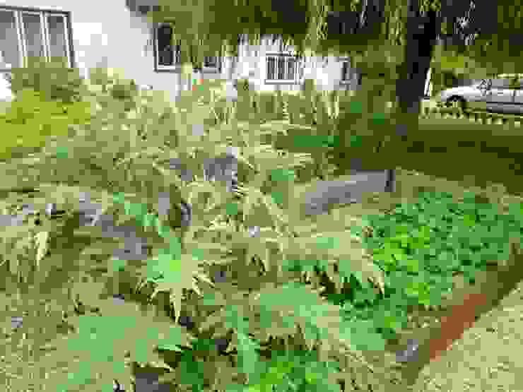 Clipped Hedge Cottage Jardines de estilo clásico de Aralia Clásico Madera Acabado en madera