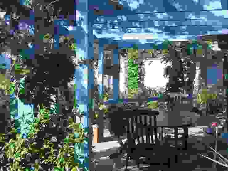 Clipped Hedge Cottage Vườn phong cách kinh điển bởi Aralia Kinh điển Gỗ Wood effect