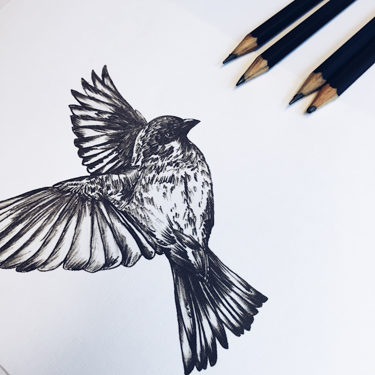 BIRD de PEN STUDIO Escandinavo Madera Acabado en madera