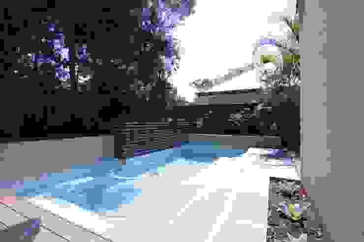 Applecross Project Project Artichoke Tropical style pool