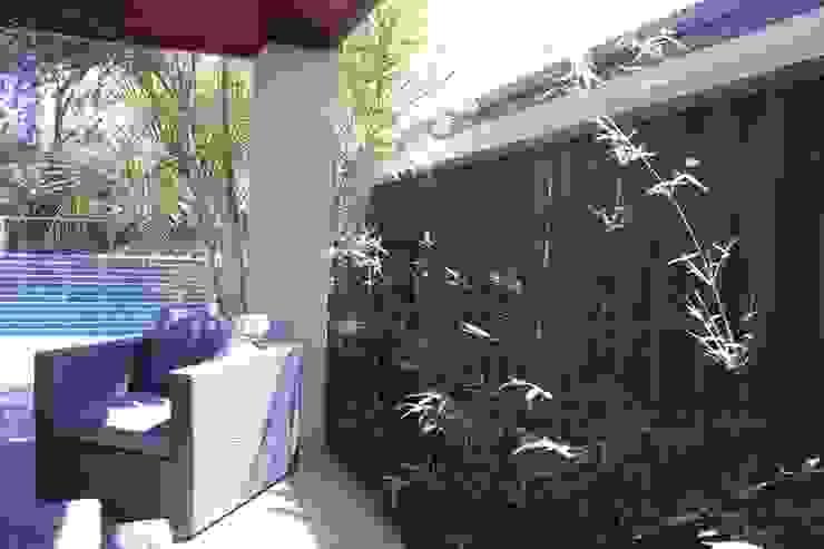 Applecross Project Project Artichoke Tropical style garden