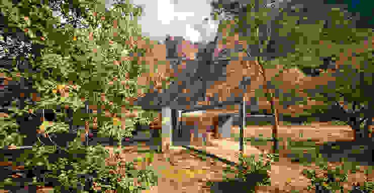 Casa Meztitla: Jardines de estilo  por EDAA | Estrategias para el Desarrollo de Arquitectura, Clásico