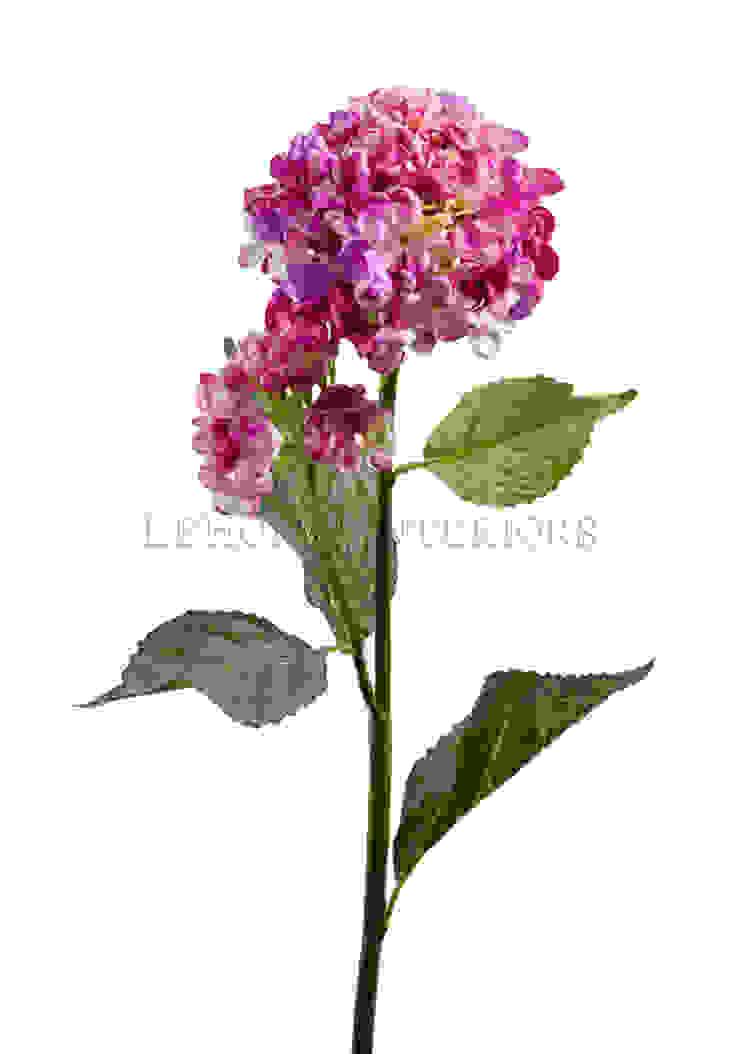 Цветок Гортензия V159 от LeHome Interiors Классический
