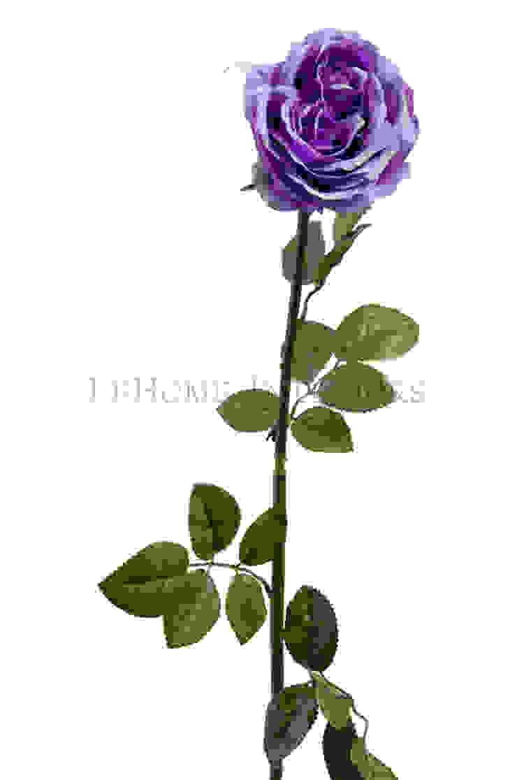 Цветок Роза V160 от LeHome Interiors Классический