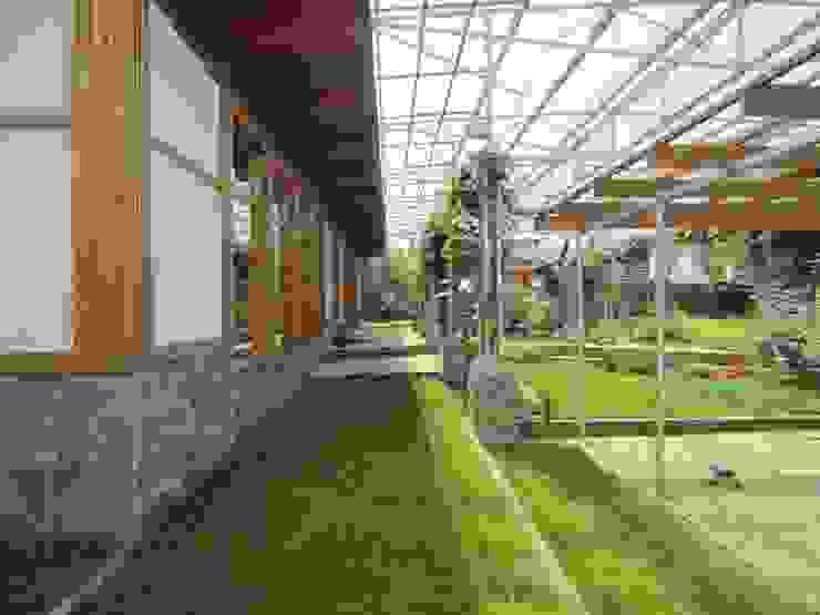 Canopy House Сад в азиатском стиле от PIAFF Азиатский