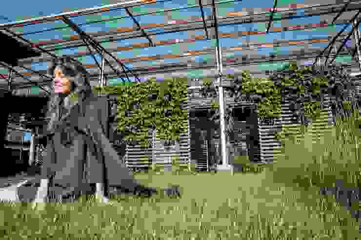Canopy House: Сады в . Автор – PIAFF