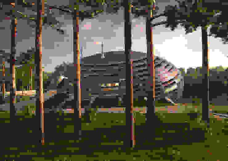 UFO House Архитектурное и дизайнерское бюро WithArch Дома в стиле минимализм