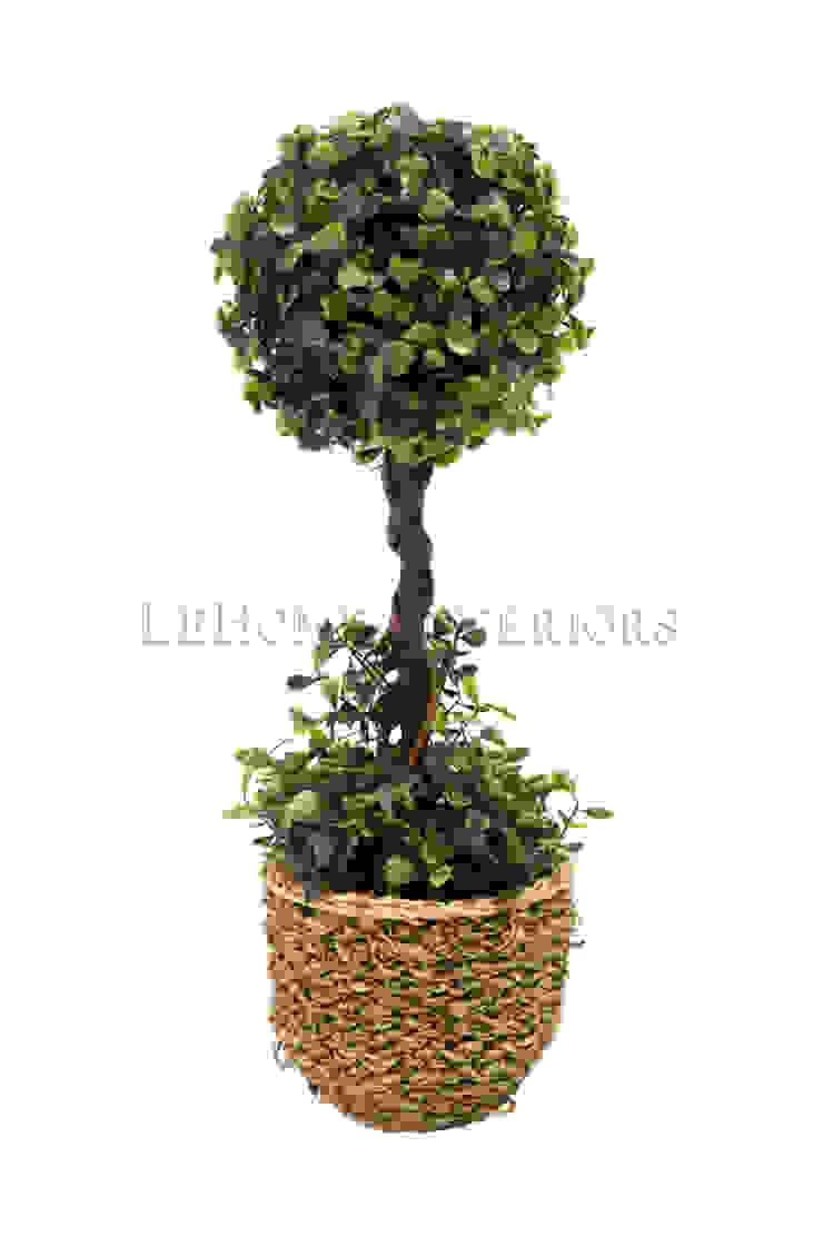 Растение в горшке V503 от LeHome Interiors Классический