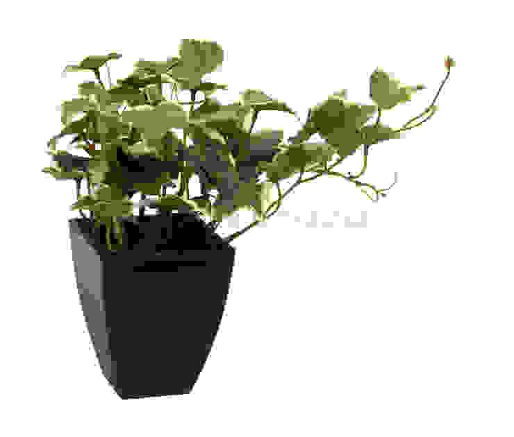 Растение в горшке V504 от LeHome Interiors Классический