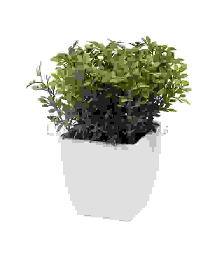 Растение в горшке V547 от LeHome Interiors Классический
