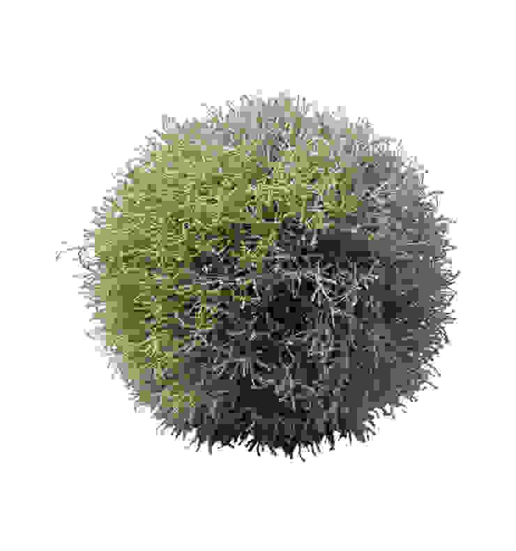 Шар из травы V688 от LeHome Interiors Классический
