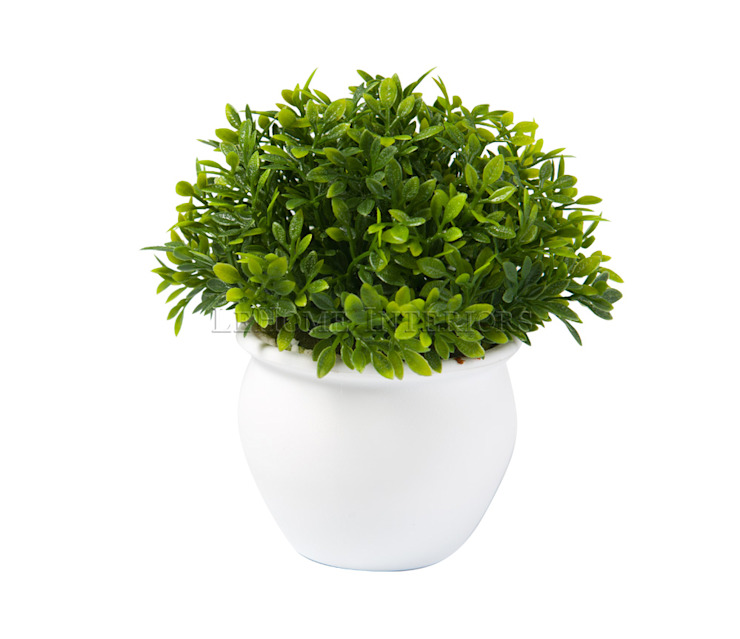 Растения в горшке V920 от LeHome Interiors Классический