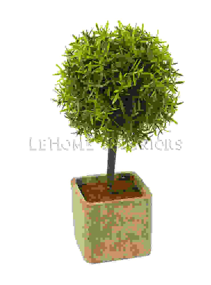 Растения в горшке V922 от LeHome Interiors Классический