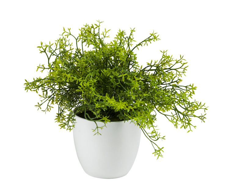 Растения в горшке V981 от LeHome Interiors Классический