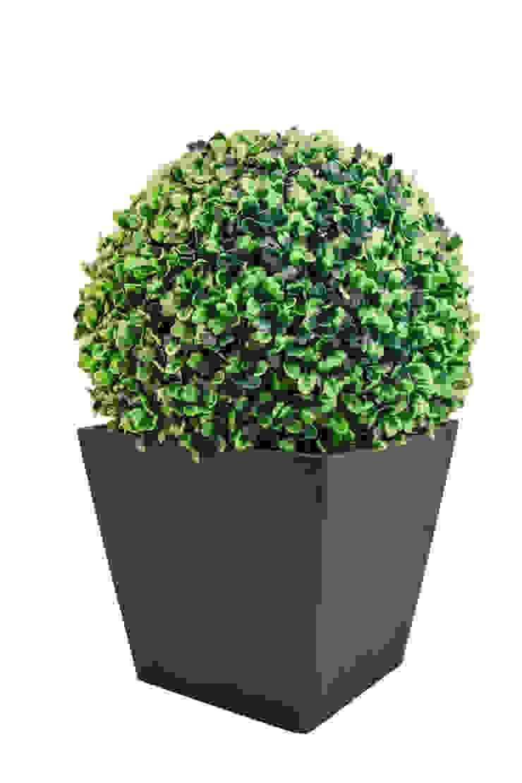 Растение в горшке V1075 от LeHome Interiors Классический