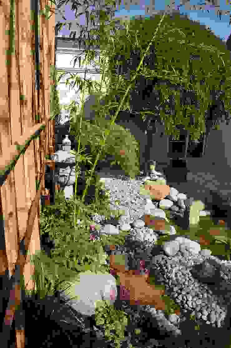 Taffin Asian style garden