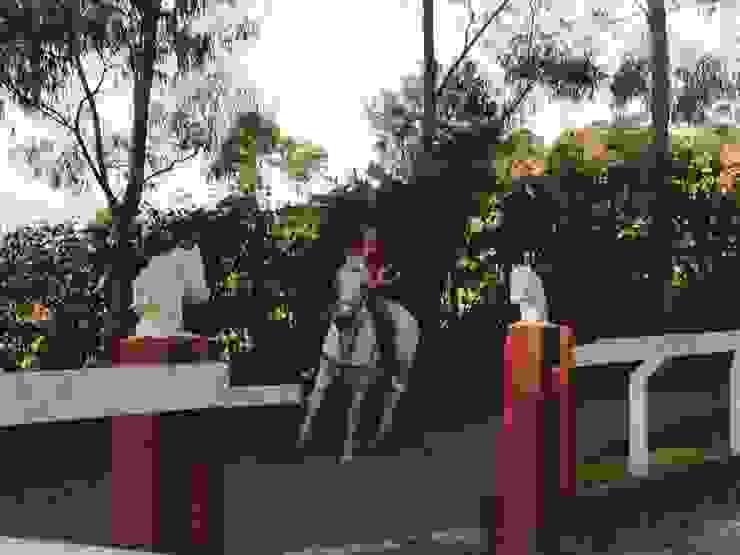 Acesso à Pista de Equitação Jardins rústicos por Daniela Zuffo Arquitetura e Interiores Rústico