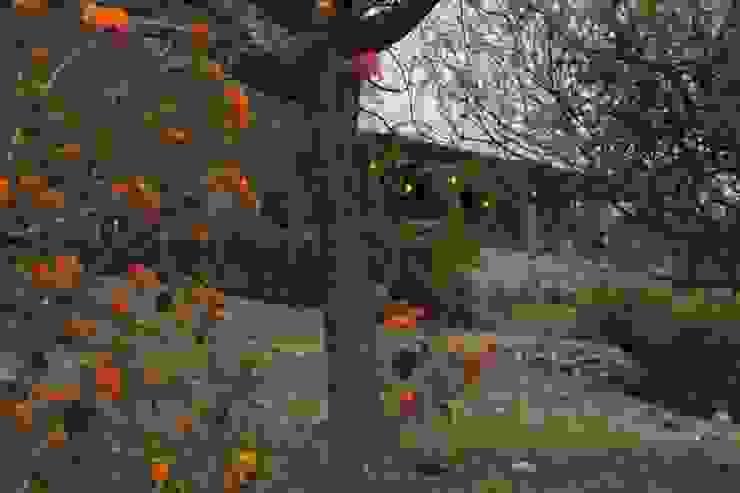 Entre flores Casas rústicas de Casas de Campo Rústico Piedra