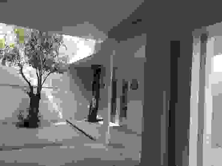 VILLA AUCH Balcones y terrazas modernos de HL Héctor Lucatero arquitectos Moderno