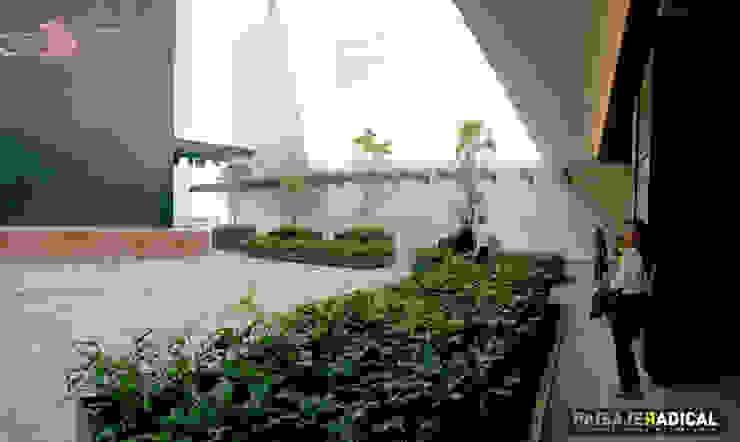 Terraza Paisaje Radical Jardines modernos