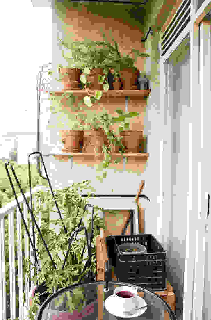 Balcón con vegetación Balcones y terrazas de estilo moderno de PUNCH TAD Moderno