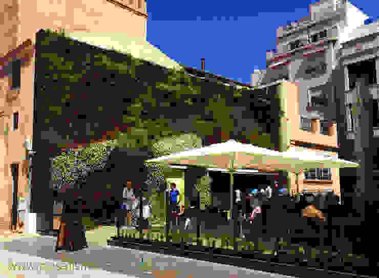 Jardín vertical en Elche - 4 meses después Bares y clubs de estilo mediterráneo de Jardines Verticales Paisajismo Urbano Mediterráneo
