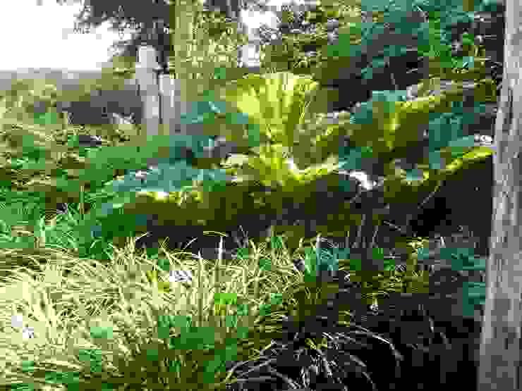 Tropische tuin Tropische tuinen van Koert Gardening Tropisch