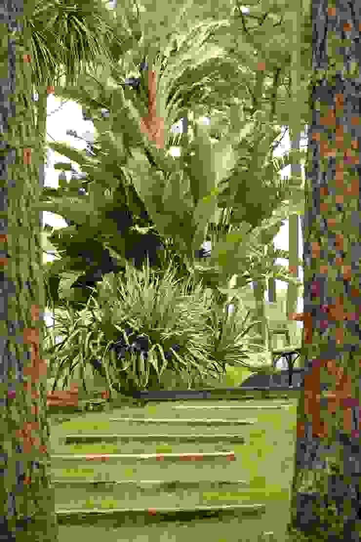 COISAS DA TERRA Сад