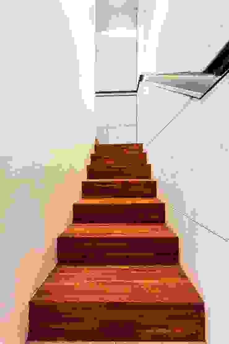 Klatka schodowa, wejście do firmy. Nowoczesny korytarz, przedpokój i schody od Venturi Home Solutions Nowoczesny Drewno O efekcie drewna