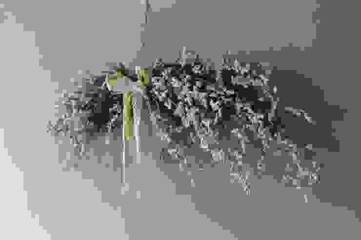 blooming&me HogarPlantas y accesorios