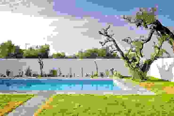 Piscina y jardín Piscinas de estilo moderno de Sánchez-Matamoros | Arquitecto Moderno Piedra