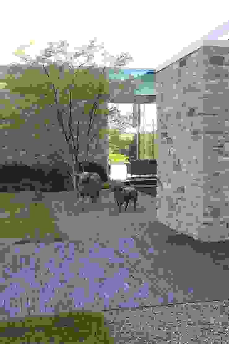 Luc Spits Architecture Garden Accessories & decoration