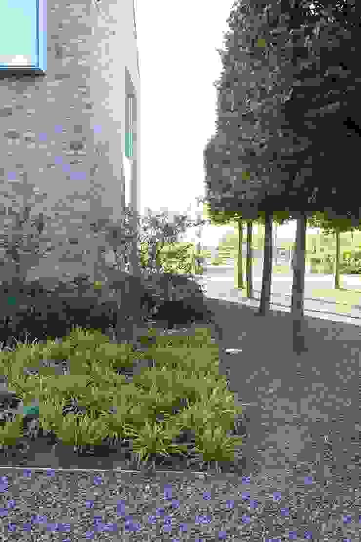 Luc Spits Architecture Garden Plants & flowers