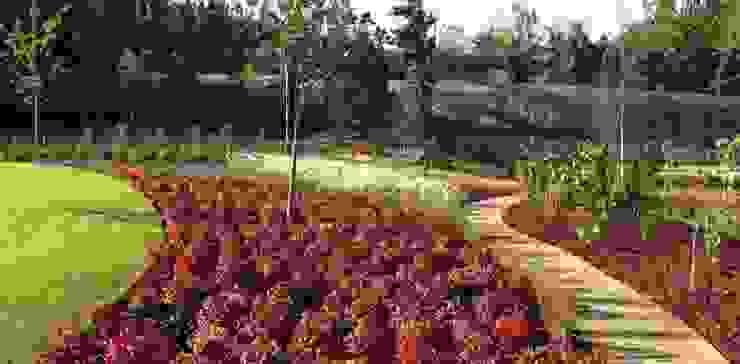 Jardim de habitação particular em Guimarães Jardins mediterrânicos por Neoturf Mediterrânico