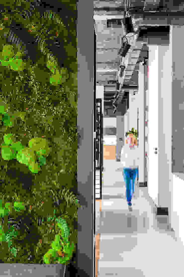 Our photoshoot of Decoroom Architects office od Ayuko Studio Nowoczesny