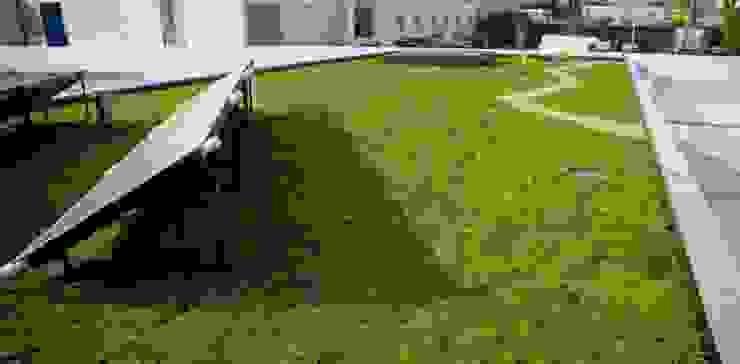 Cobertura ajardinada em Vila Nova de Gaia Jardins modernos por Neoturf Moderno