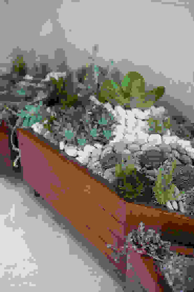 Diseño de jardín interior. de Dovela Interiorismo Moderno Madera Acabado en madera