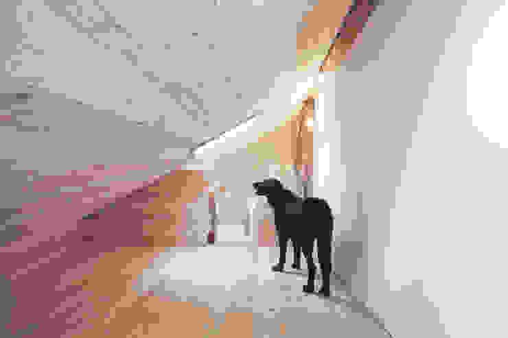 Arbeitszimmer Minimalistische Arbeitszimmer von Studio für Architektur Bernd Vordermeier Minimalistisch Holzwerkstoff Transparent