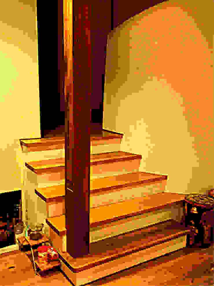 大黒柱とスキップフロア階段 モダンスタイルの 玄関&廊下&階段 の 渡邉意匠 モダン 木 木目調