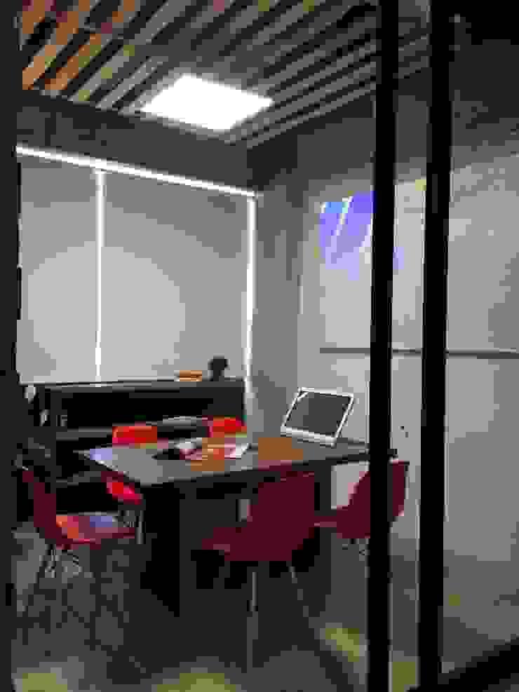 Moderne kantoorgebouwen van VICTORIA PLASENCIA INTERIORISMO Modern Houtcomposiet Transparant