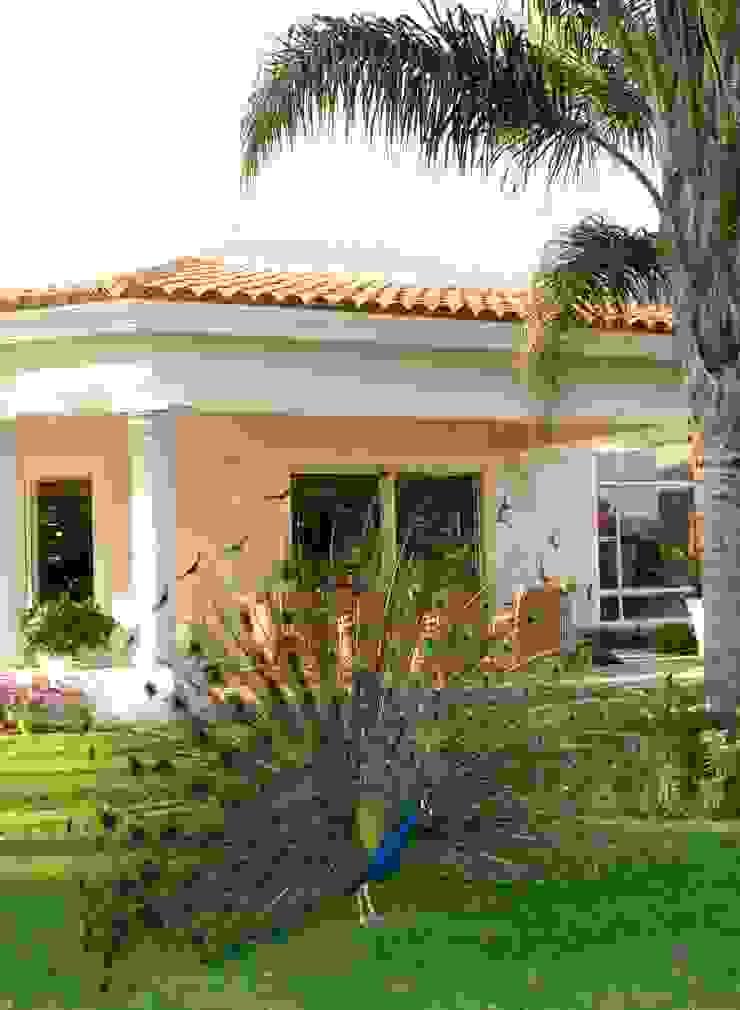 Fachada lateral:  de estilo colonial por VICTORIA PLASENCIA INTERIORISMO, Colonial