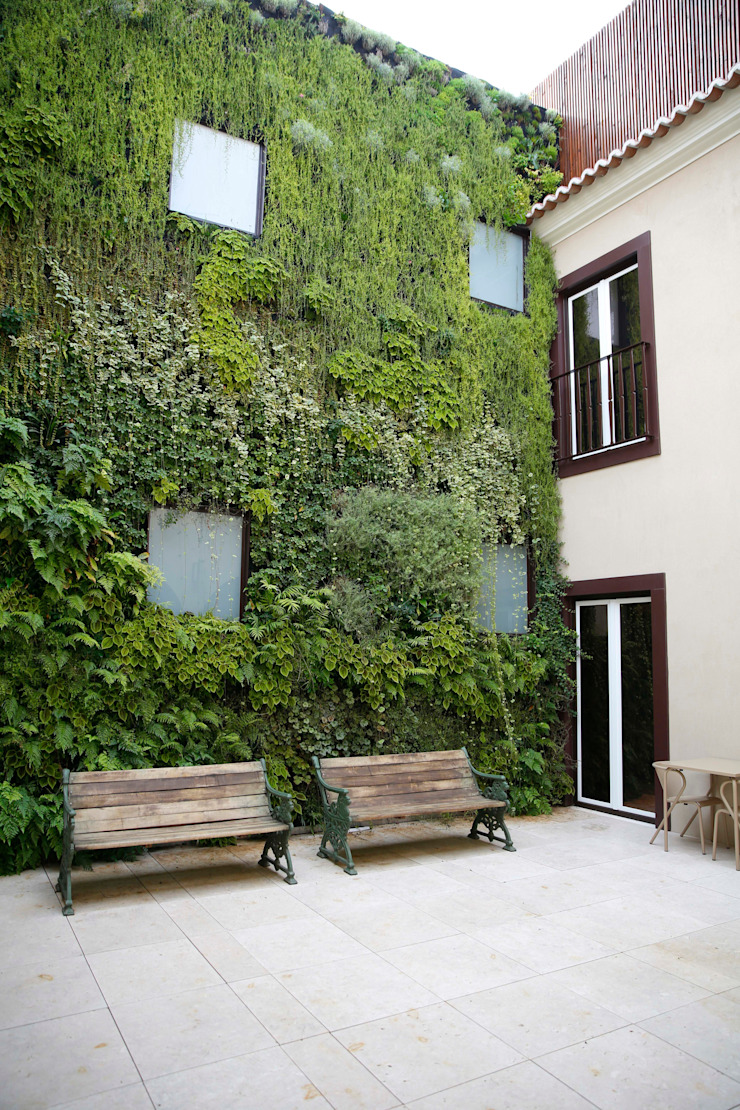 by LC Vertical Gardens Modern