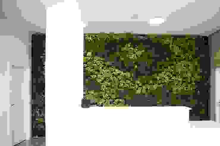 Paladin * Zona Industrial Lote 6 Golegã - Portugal por LC Vertical Gardens Moderno
