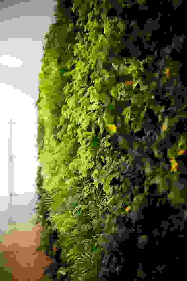 Paladin * Zona Industrial Lote 6 Golegã – Portugal por LC Vertical Gardens Moderno